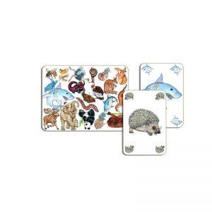 ZaniMatch gioco di carte Djeco