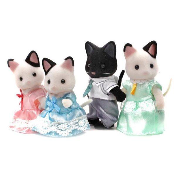 famiglia gatti tuxedo-0