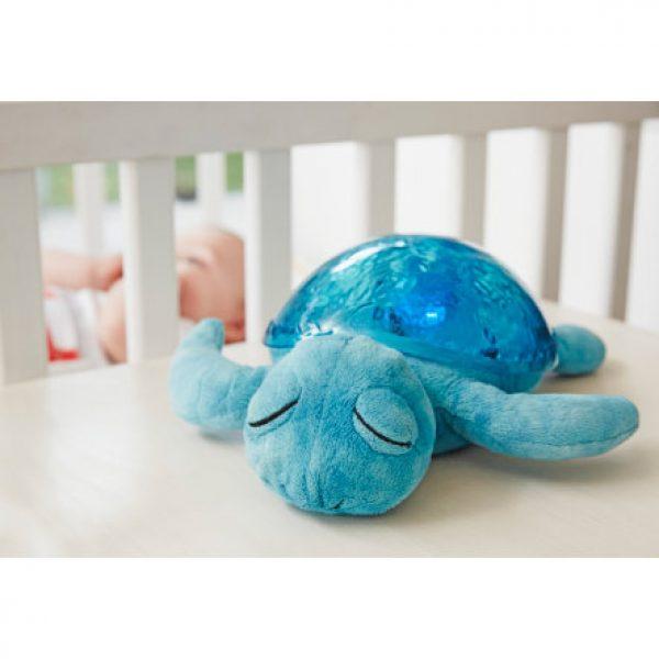 tranquil turtle acqua-3